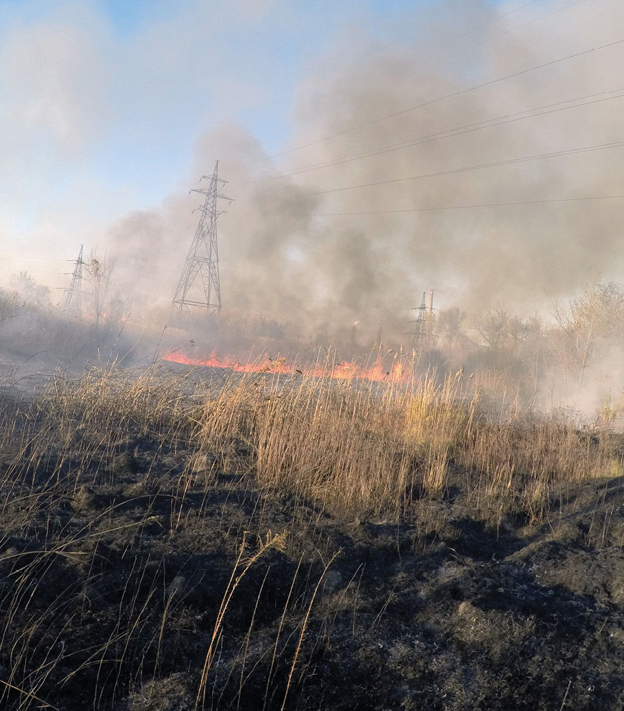 Rethinking  Utility Vegetation  Management California's worst wildfire season is challenging regulators and utilities to come up with new mitigation approaches By Elizaveta Malashenko, California Public Utilities Commission
