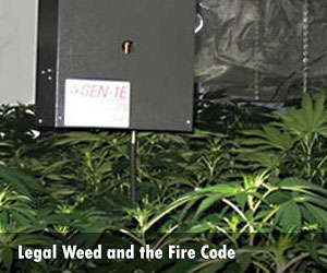 Denver's Legalized Marijuana Industry and the Fire Code