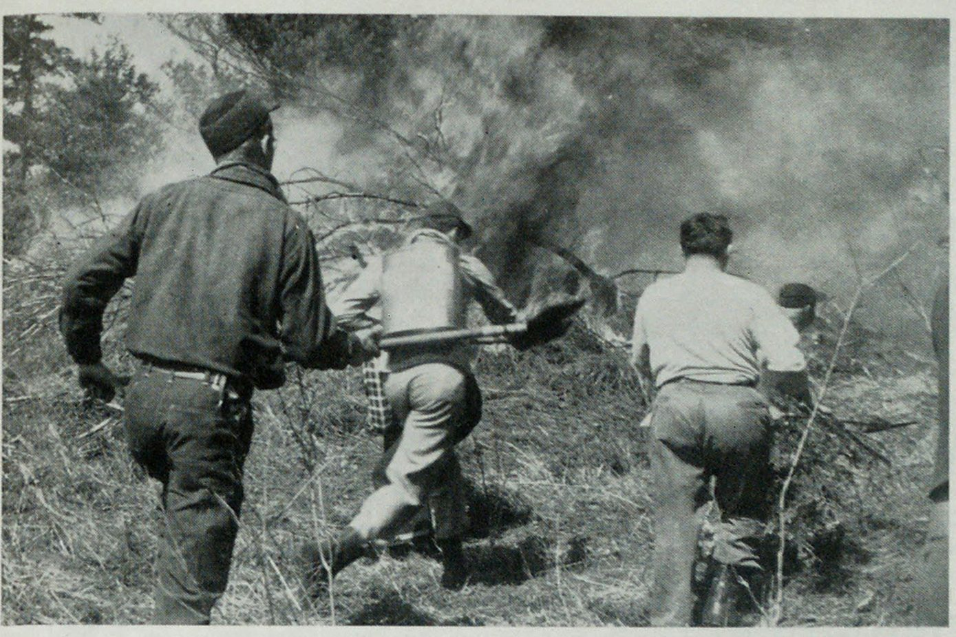 Volunteer fire fighters race into action near Claremont, N. H. It required four hours of hard work atop Bible Hill to control blaze. Fire started when high winds whipped embers from cooking fire under maple syrup kettle into grasslands