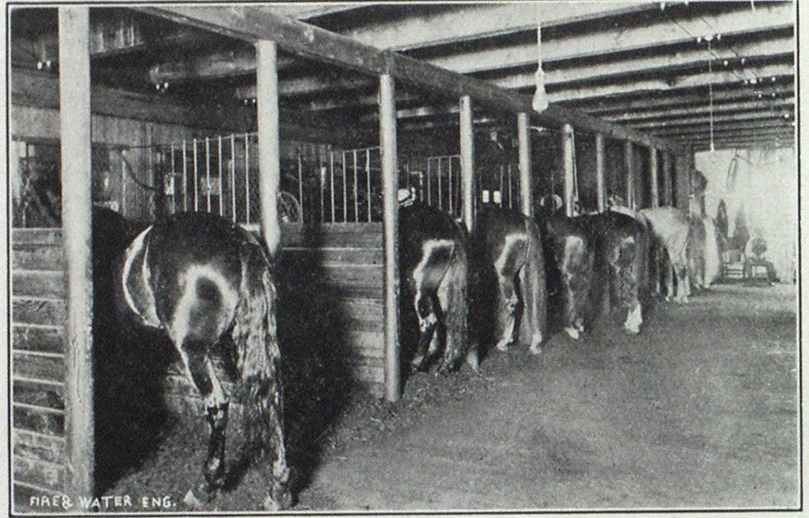 CENTRAL FIRE STATION, SOUTH, BEND, IND. HORSE STALLS WITH PEAT MOSS BEDDING.