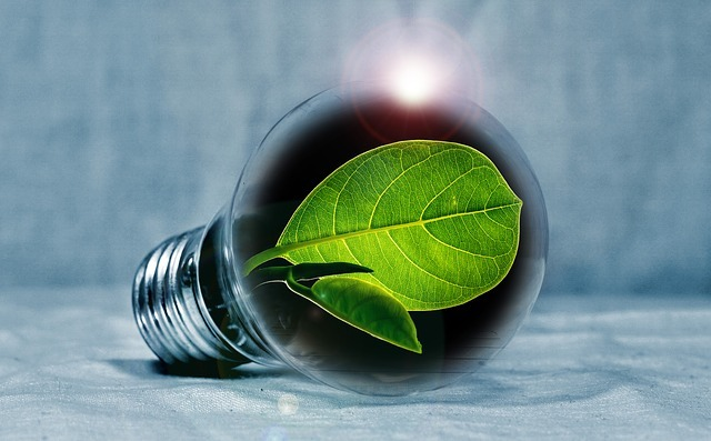 Image result for decarbonize