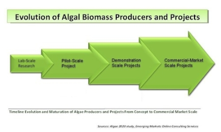 biofuels are likely to make an Sustainable production of second-generation biofuels will likely have a limited role in the future might make domestic use of lignocellulosic.