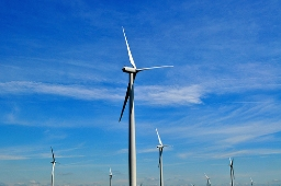 Western Wind Energy: A Matter of Trust and Value