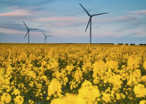 Energy Efficiency and Renewables Are Lowest Risk/Cost Investments for Utilities