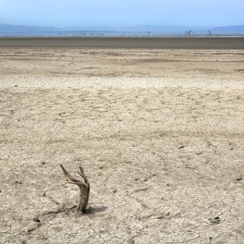 Can Geothermal Energy Save California's Salton Sea?