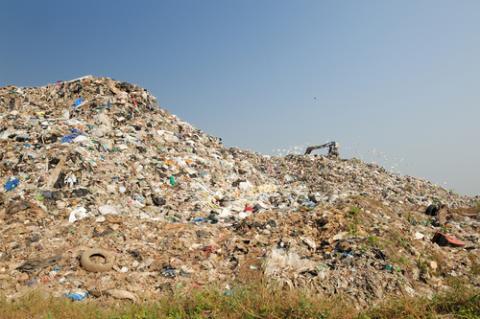 The Food Waste Debacle