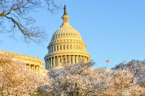 US Vote-a-Rama Reveals Senators' Environmental Agenda