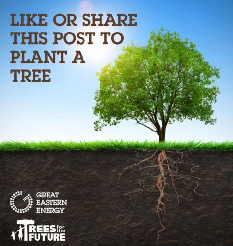 Donate Trees to Communities in Need on Earth Day